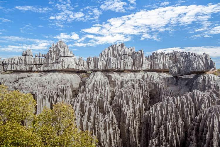 Гората на ножовете, Мадагаскар